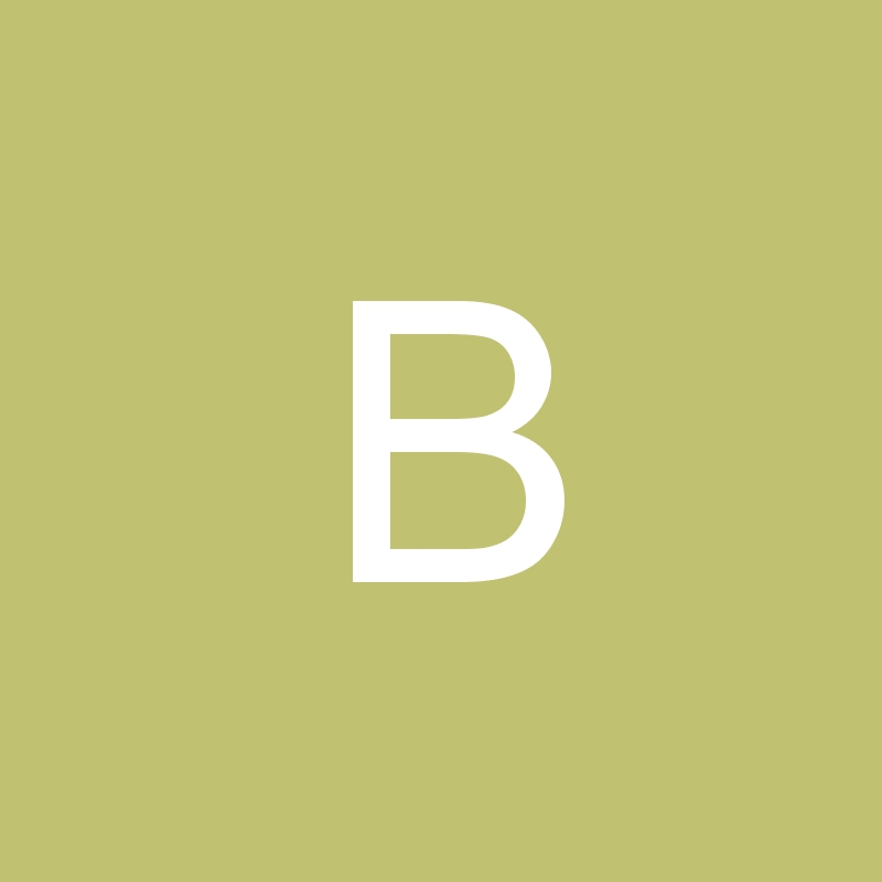 Belei17