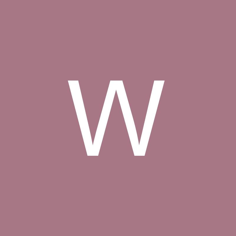 willei_72