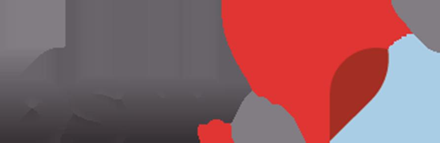 bsm.eu Logo